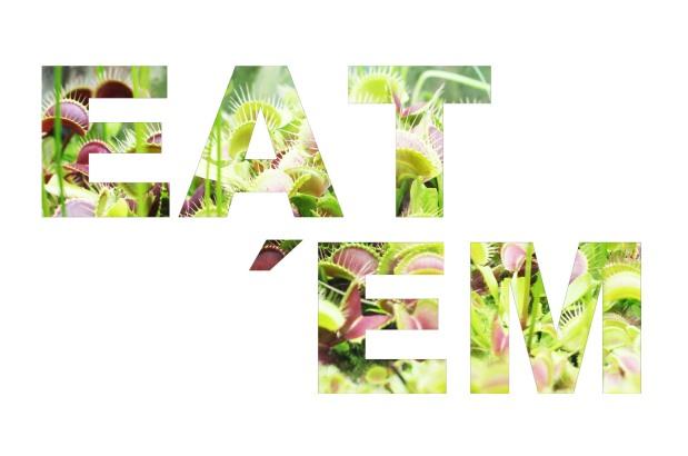 eat_em