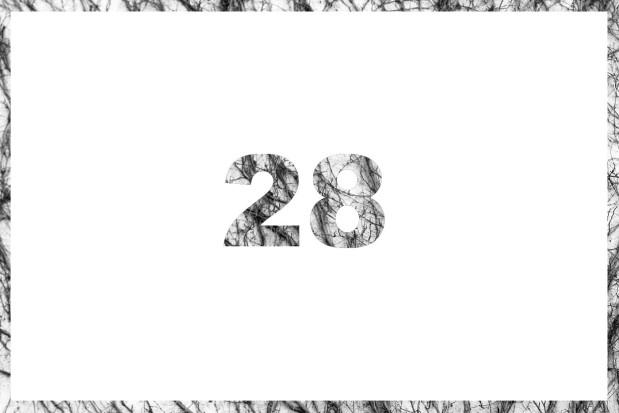 28_lim